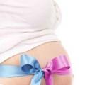 Мальчик или девочка? Как определить пол будущего ребенка? /