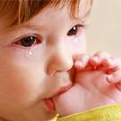 Как избежать детской истерики? |  Мама |