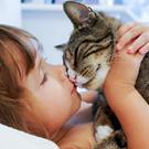 Дети и животные: Ответы на актуальные вопросы /  Мама /